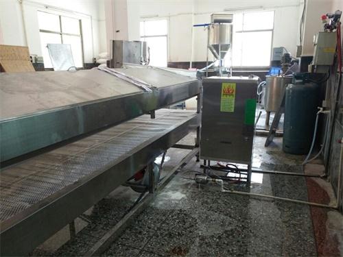燃气蒸汽发生器配套米粉机案例