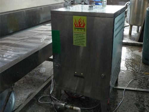 燃气锅炉配套河粉机案例