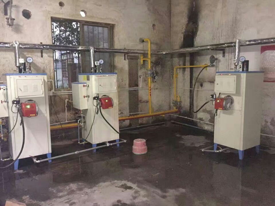 高压燃气蒸汽发生器配套食品厂案例
