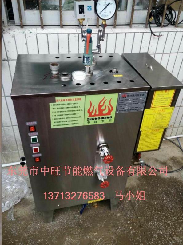 电加热蒸汽发生器案例